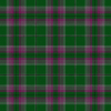 scottish gray hunting tartan